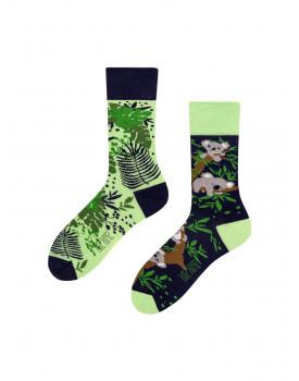 Unisex kojinės Koala