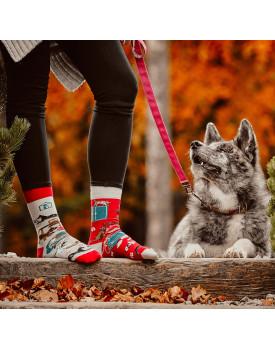 Unisex kojinės Katės ir Šunys